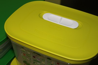 Tupperware Fridgemart container