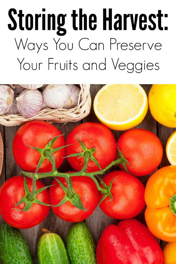Ways You Can Preserve Your Fruits and Veggies  :: Now that you have a bountiful harvest, what will you do with all of those fruits and veggies from your garden or your local farmer's market? Here are some  healthy recipe ideas and ways you can preserve your fruits and vegetables.