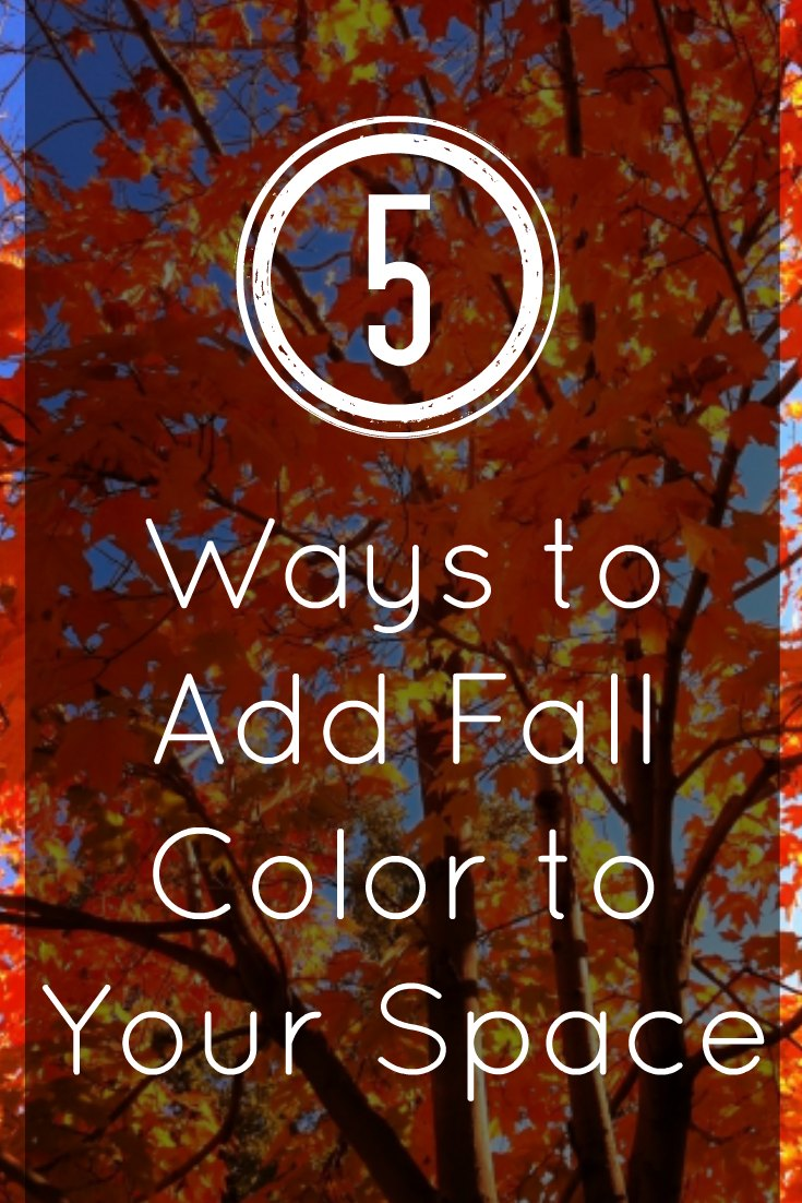 5 Ways to Add Fall Color to Your Space - Invite the warm fall colors of Red, yellow, orange and gold into your home while on a frugal budget. Here's how to add fall colors to your decor.