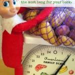 Weigh Your Produce Elf via BargainBriana