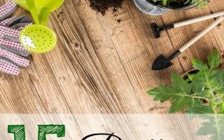 15 Brilliant Gardening Hacks