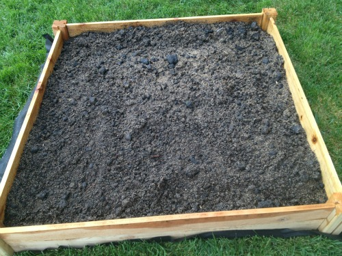 raised bed garden soil