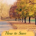 savemoneyfall