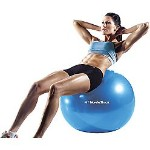 Sears.com:  NordicTrack 65-cm Exercise Ball
